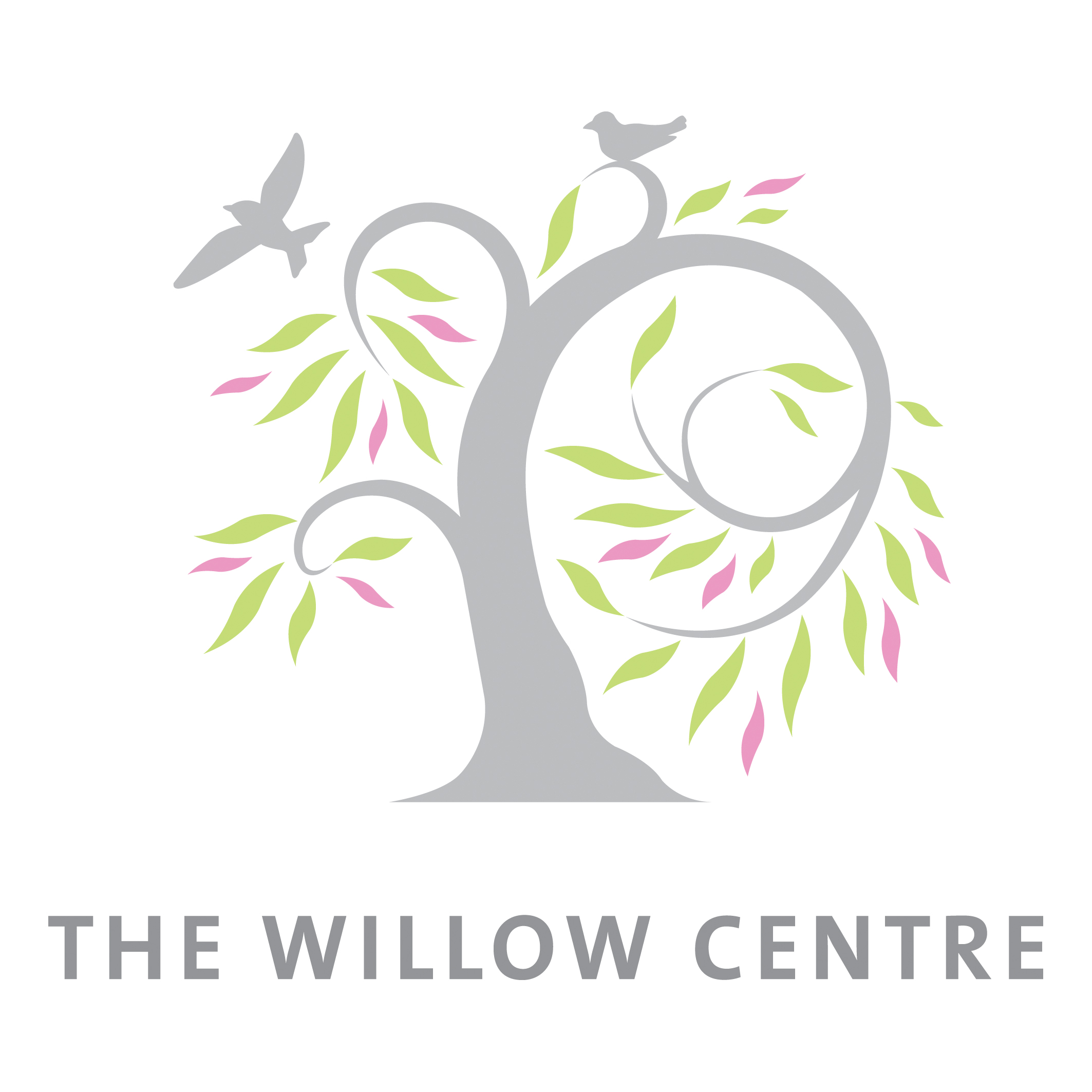 The Willow Centre